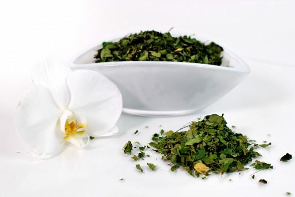 Moringa Tee / Moringa blätter